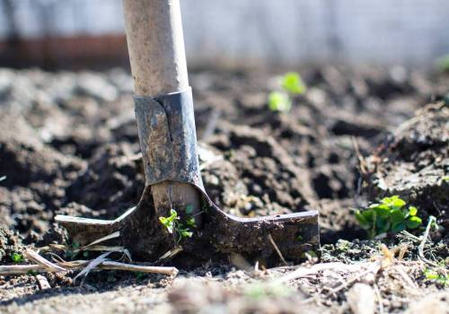 Stay injury free this Spring in the garden